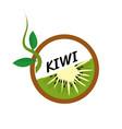 kiwi fruit icons flat style vector image vector image