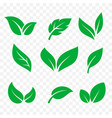 leaves icons isolated set green tree leaf eco and vector image vector image
