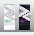 template is a universal business roll up banner vector image vector image
