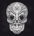 mexican skull on chalkboard background vector image