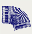 Accordion vector image vector image