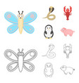 an unrealistic cartoonoutline animal icons in set vector image