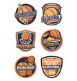 basketball sport team badges vector image vector image