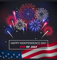 fireworks realistic background vector image