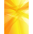 Orange Yellow Background vector image