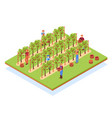 winery isometric composition vector image