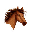 arabian brown wild horse head sketch symbol vector image vector image