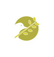 beauty bird logo vector image vector image
