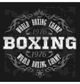 Boxing label and elements in dark background vector image vector image