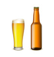 glass and a bottle of beer vector image