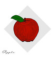 hand drawn apples hand drawn vector image
