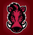head of wild hog mascot vector image vector image