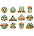 aviation badges vector image
