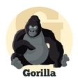 ABC Cartoon Gorilla2 vector image vector image