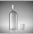 bottle of vodka vector image