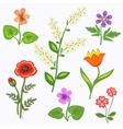 Flower set Nasturtium primula viola anemone vector image vector image