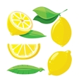 Fresh lemons with leaves lemon slice isolated on vector image vector image
