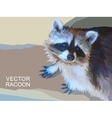 racoon made of polygons Eps 10 vector image vector image