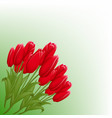 a bouquet of tulips realistic spring flowers with vector image