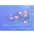 cherry blossoms for your design vector image vector image