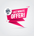 flash sale last minute offers 50 off label vector image