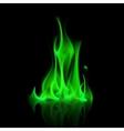 Green Magic Fire Flame Bonfire vector image vector image
