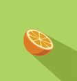 Orange Fruit Flat Design vector image vector image