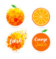 orange juice logo set design vector image