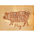 pig pork cutting scheme craft vector image vector image