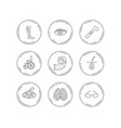 vein varicose neurology and trichology icons vector image
