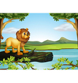 A lion above a trunk with algae vector image vector image