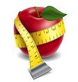 Apple with tape measure vector image