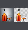 brandy bottle and glass mockup isolated clip art vector image