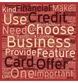Business Credit Cards Credit Card Offers That Is vector image vector image