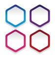 Empty hexagon sticker set vector image vector image