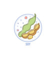 icon soybean pod and seeds in circle flat vector image vector image