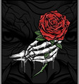 skull hand holding a rose vector image