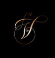 v monogram curl monogram golden curl vector image