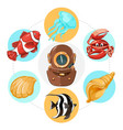 cartoon underwater life concept vector image