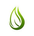 eco drop organic nature symbol logo design vector image vector image