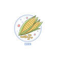 icon corn cobs and seeds in circle flat linear vector image vector image