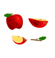 Red apple fruit vector image vector image