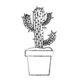 blurred silhouette cactus of three branches in pot vector image