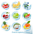 big collection fruit in a water splash icons vector image