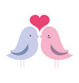 bird dove lover with heart design vector image