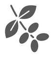coffee tree branch glyph icon coffee and cafe vector image