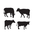 cow silhouette vector image