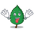 crazy mint leaves mascot cartoon vector image vector image