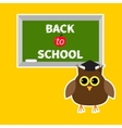Owl in graduate hat academic cap and green board vector image vector image