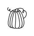 pumpkin vegetable harvest on white background vector image vector image